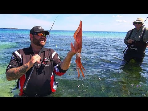 How To Catch Landbased Squid With Oz Fish TV  Using Black Magic Squid Snatchers