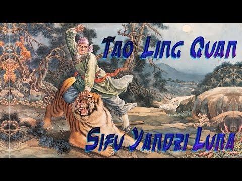 YANDRI Tao Ling Chuan
