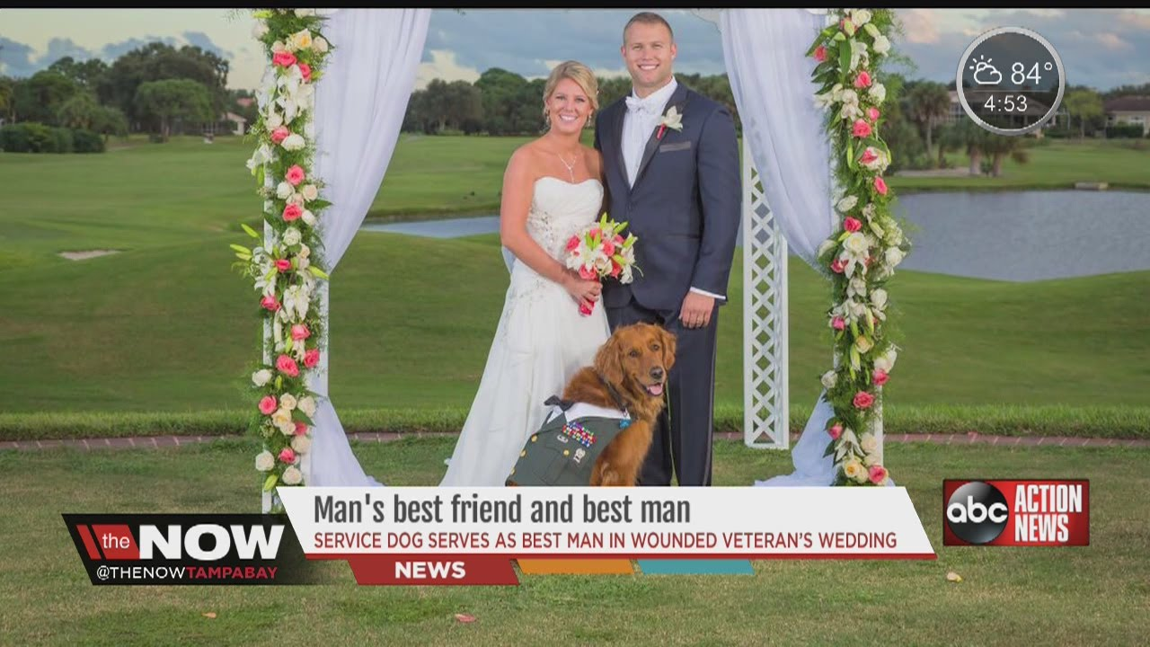 Dog Serves As Best Man In Veterans Wedding Youtube