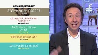[INTÉGRALE] Comment ça va bien ! 15/01/2016 P2 Stéphane DE GROODT #CCVB
