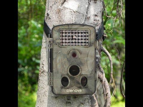 Crenova 12MP 1080P Infrared Game & Trail Camera RD1000