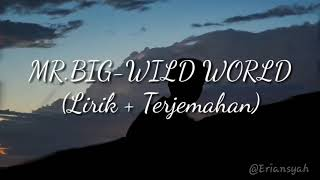 MR.BIG - WILD WORLD (Lyric & Terjemahan)