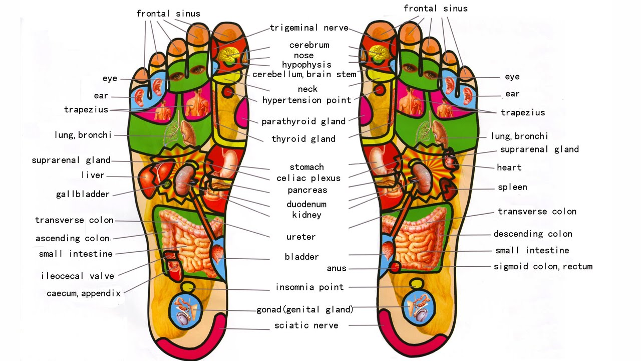 Image result for reflexology