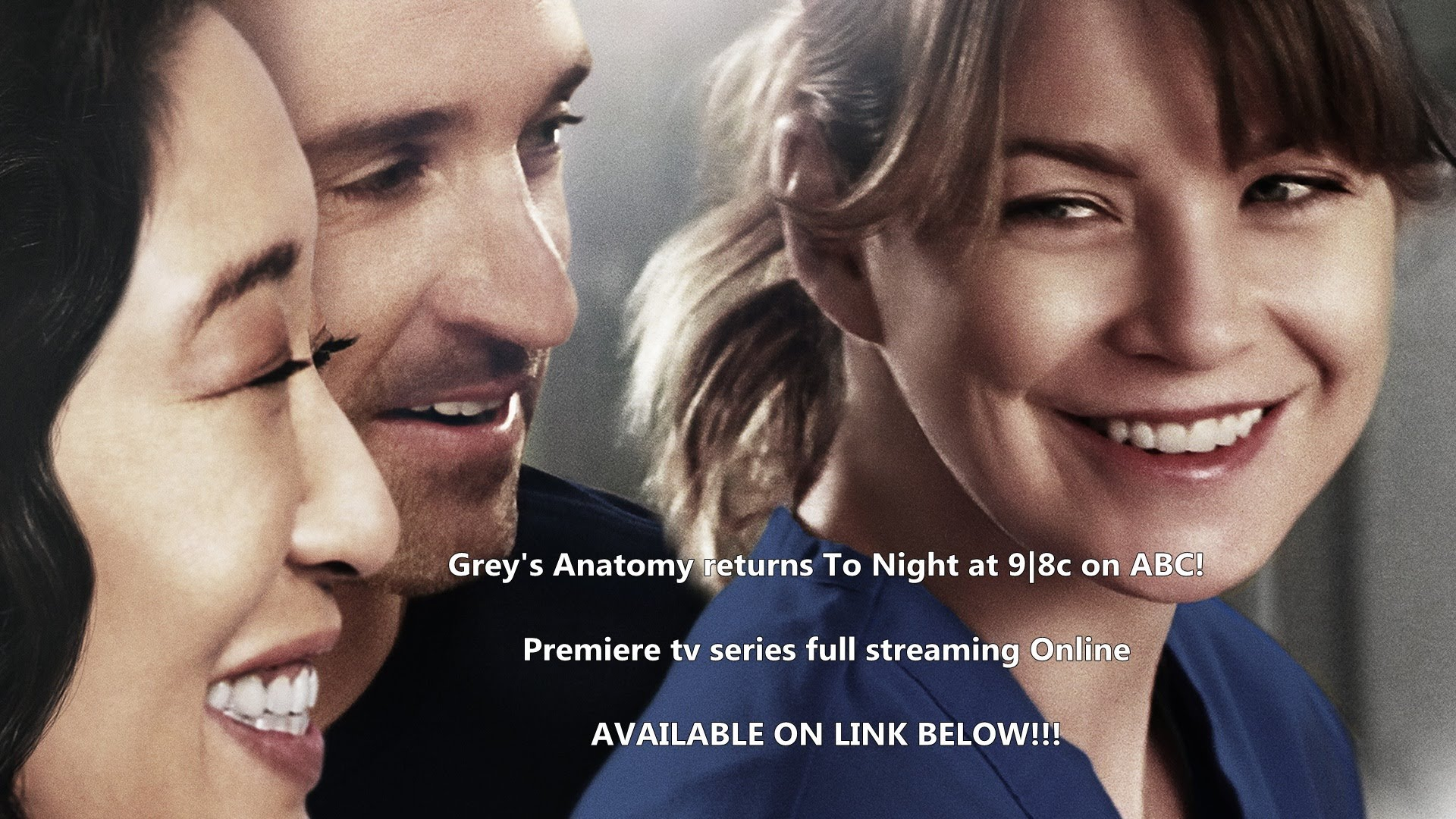 Greys Anatomy My Next Life Season 12 Episode 12 Watch Full