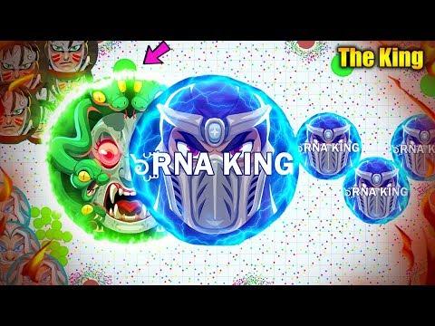 The King Of Agar.io