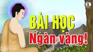 Kể truyện nhân quả BÀI HỌC NGÀN VÀNG Cho Kẻ Háu Thắng Chuyện Nhân Quả Phật Giáo Có Thật 100%