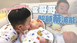 【蔡桃貴成長日記#63】當哥哥照顧蔡波能,奪走弟弟初吻了!