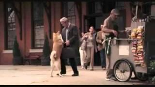 Câu Chuyện Cảm Động Rơi Nước Mắt Về Chú Chó HACHIKO