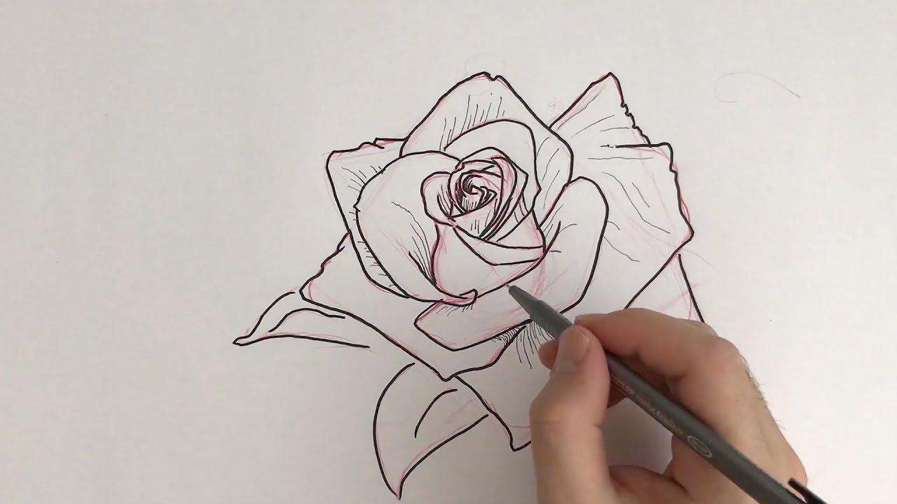how to draw a rose tattoo design