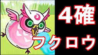 どうもーーー!!ファイアー飯塚です!!!! ピンクデブーー!!!!う...