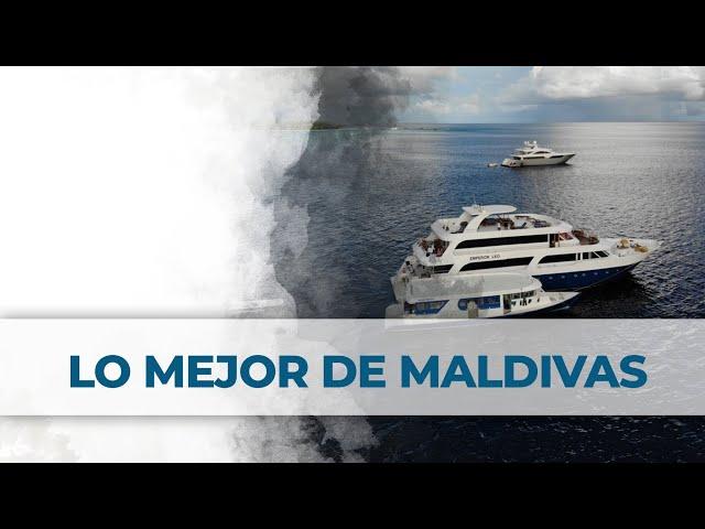 Lo mejor de Maldivas | Maldives | 2LittleDivers