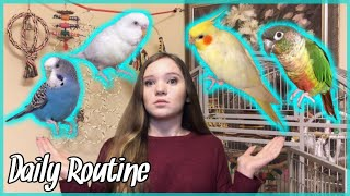 DAILY ROUTINE With All My Crazy Birds!! *what it's like to own parrots*