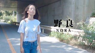 野良-Nora-