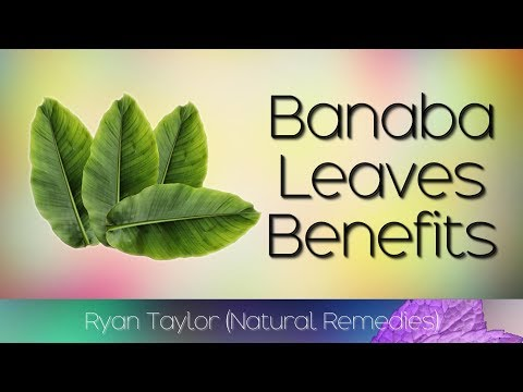 Banaba Leaves: Benefits for Health