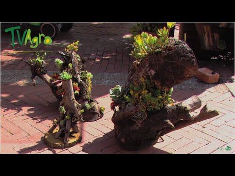 Decoracin de Jardines con macetas naturales Troncos