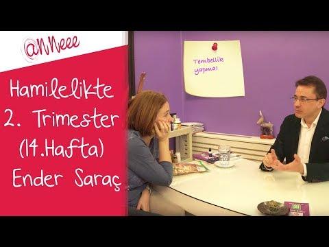 Hamilelikte 2. Trimester (14.Hafta) | Ender Saraç