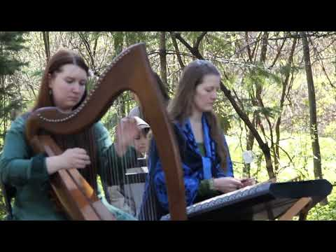 Monaghan Twig/Blacksmith Reels By Dragon Fly | Celtic Harp & Hammered Dulcimer - Irish Music