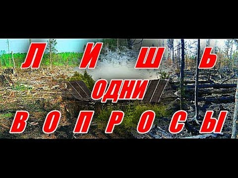 Лишь одни вопросы (ВНИМАНИЕ!!! ДЕБЮТ!!!)  - Алексей Доктор Леший -  бард
