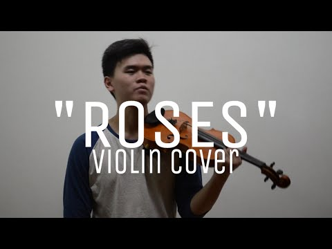 Roses (ft. ROZES) - The Chainsmokers | Violin Cover