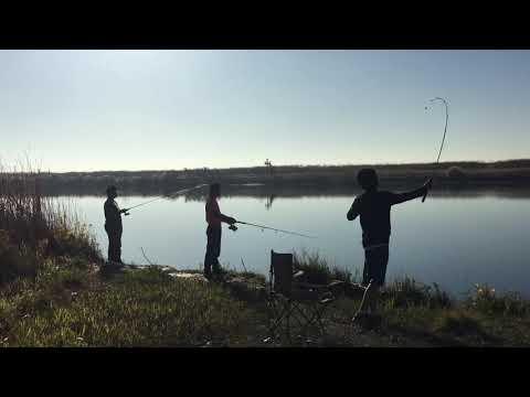 Fishing At Sacramento River