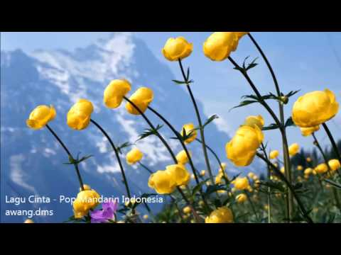 lagu cinta - Pop Mandarin Indonesia Kenangan