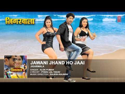 Jawani Jhand Ho Jaai [ New Bhojpuri Audio Song 2015 ] Feat.Nirahua & Aamrapali - Jigarwala
