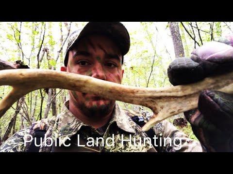 Public Land Deer Hunting ( 2017 CT Archery Season Part 2)