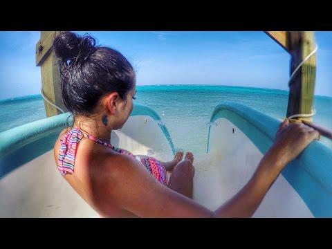 Belize Travels: San Pedro, Ambergris Caye, Shark  Diving - DJI Phantom Drone GoPro [Part 2]