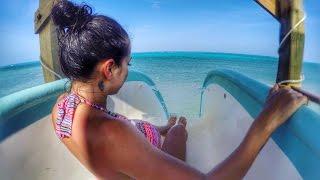 Belize Travels: San Pedro, Ambergris Caye, Shark  Diving - DJI Phantom Drone GoPro [Part 2]