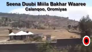 Dubbii Miila Bakar