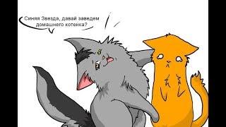 Коты-Воители {Приколы ~ часть 1}