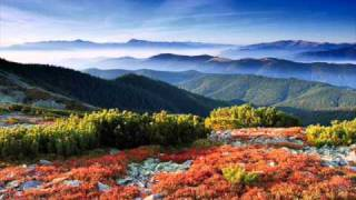 Download Video Bee Gees - Wish You Were Here *HQ* MP3 3GP MP4