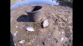 Рыбалка в октябре Не каждый сможет ТАКОЕ поймать Закрытие рыбалки по мирной рыбе