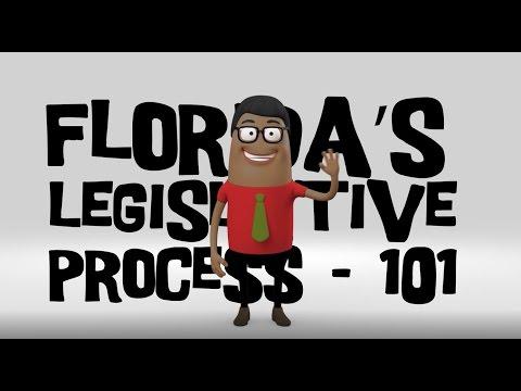 Florida's Legislative Process 101