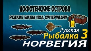 Русская рыбалка 3.99 (Редкости) - Акула исландская, Скат-кукушка.