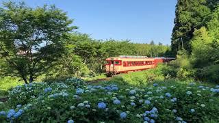 久我原駅と紫陽花といすみ鉄道
