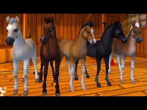 ЗВЕЗДНЫЕ ЛОШАДИ #1 Ночная звезда в Star Stable Horses! Симулятор маленькой лошадки на пурумчата