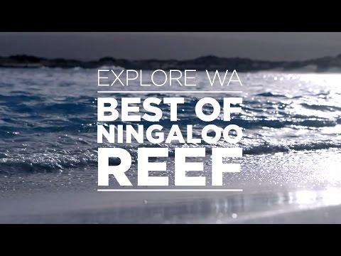 Explore Western Australia - Best of Ningaloo Reef