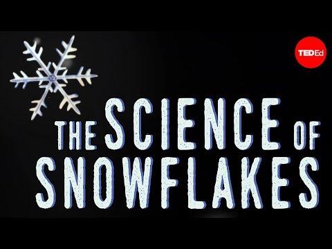 Video image: The science of snowflakes - Maruša Bradač