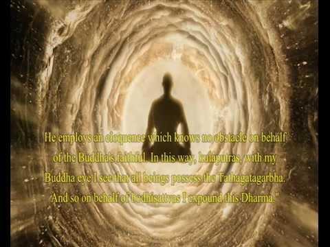 Tathagatagarbha Sutra - Buddha Shakyamuni reveals Buddha-nature of all beings