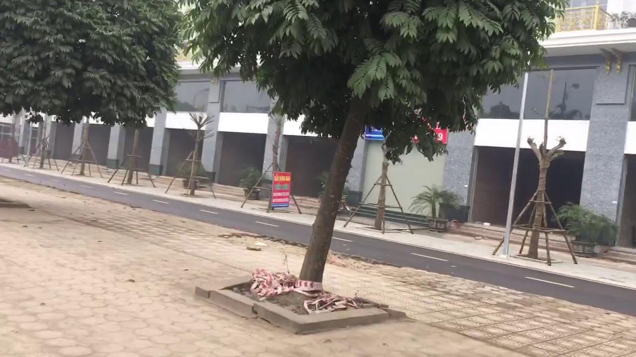 Bán Liền Kề khu đô thị Lê Trọng Tấn Hà Đông Geleximco
