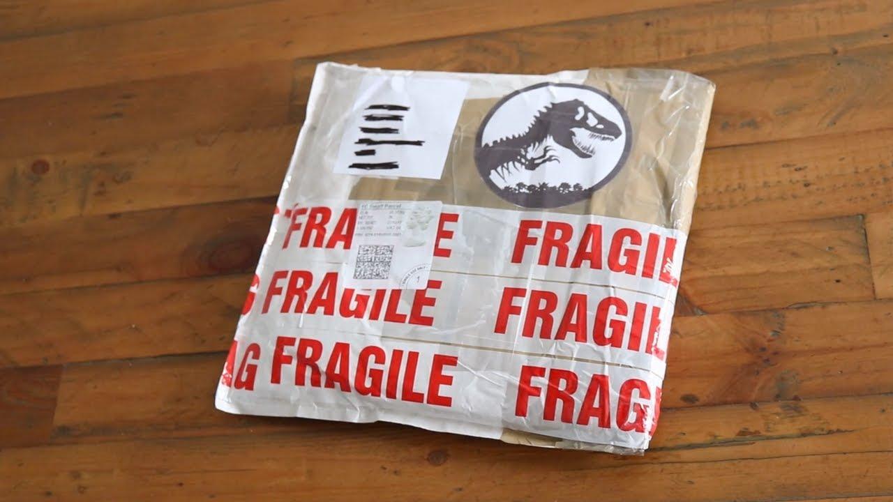 Super Secret Dinosaur Package!!!