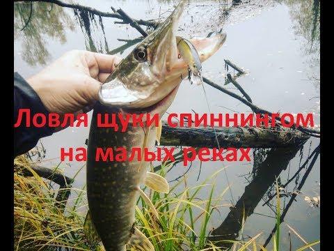 Ловля щуки спиннингом на малых реках. Снасти. Тактика
