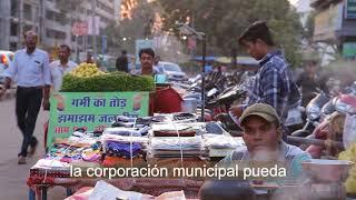 Bienes Comunes de la Humanidad: Ciudades Sostenibles