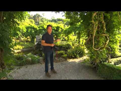 The Garden Gurus - Bantry Bay Gardens