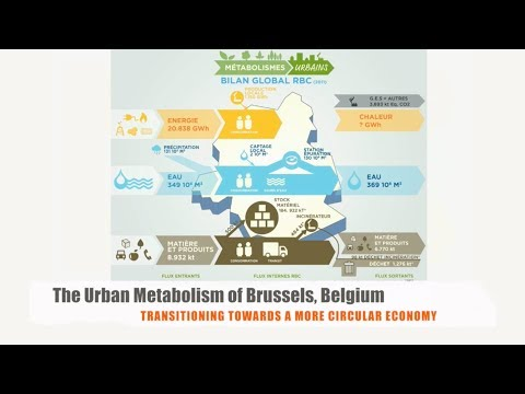The Urban Metabolism of Brussels, Belgium: Transitioning Towards a More Circular Economy