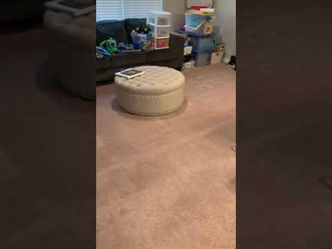 Carpet Cleaning Toms RIver NJ