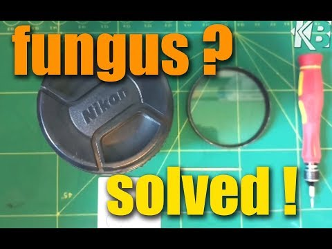 How to remove Fungus on your DSLR Lens in easy way- Malay