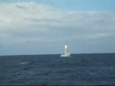 Submarine Cruise Missile Launch