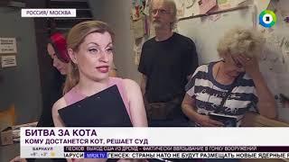 Слушание по делу кота Василия затянулось на четыре часа (сюжет телеканала МИР24)